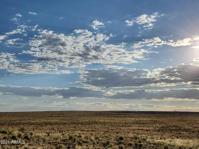 Petrified Forest Estates Lot 175, Sanders, AZ 86512 (MLS #6294077) :: Klaus Team Real Estate Solutions