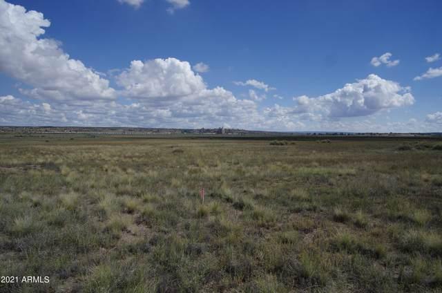 Petrified Forest Estates Unit 1  #383, Sanders, AZ 86512 (MLS #6294085) :: Klaus Team Real Estate Solutions