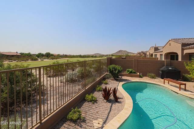 17823 W Sunward Drive, Goodyear, AZ 85338 (MLS #6294115) :: ASAP Realty