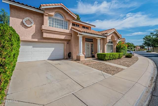 3942 W Rene Drive, Chandler, AZ 85226 (MLS #6294308) :: Yost Realty Group at RE/MAX Casa Grande