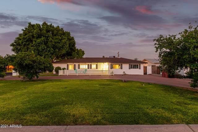 6905 E Mariposa Drive, Scottsdale, AZ 85251 (MLS #6294673) :: Dijkstra & Co.