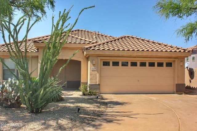 35360 N 93RD Way N, Scottsdale, AZ 85262 (MLS #6294681) :: Klaus Team Real Estate Solutions