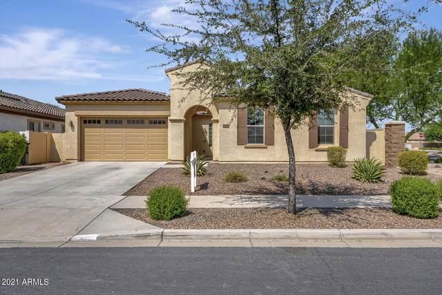 19498 E Apricot Lane, Queen Creek, AZ 85142 (MLS #6294793) :: Elite Home Advisors