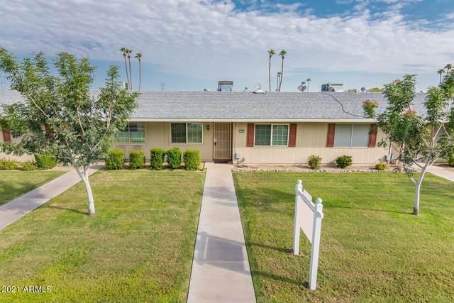 13665 N Garden Court Drive, Sun City, AZ 85351 (MLS #6295037) :: Power Realty Group Model Home Center
