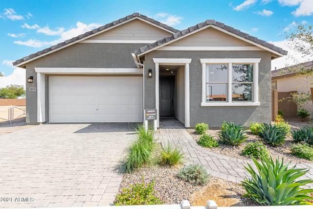 2870 N Blossom Lane, Casa Grande, AZ 85122 (MLS #6295669) :: Klaus Team Real Estate Solutions