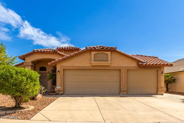 2625 N 127TH Avenue, Avondale, AZ 85392 (MLS #6295707) :: Yost Realty Group at RE/MAX Casa Grande