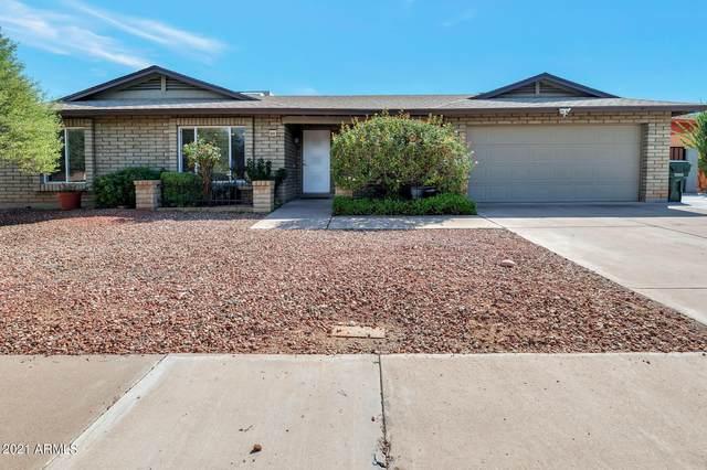6315 E Acoma Drive, Scottsdale, AZ 85254 (MLS #6295966) :: Elite Home Advisors