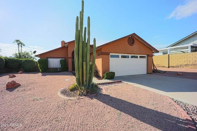 18836 N 15TH Place, Phoenix, AZ 85024 (MLS #6296077) :: Elite Home Advisors