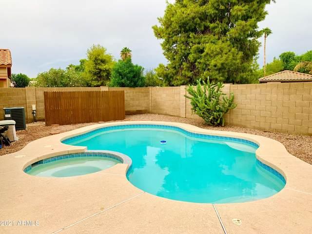 2470 S Apache Drive, Chandler, AZ 85286 (MLS #6296255) :: Elite Home Advisors