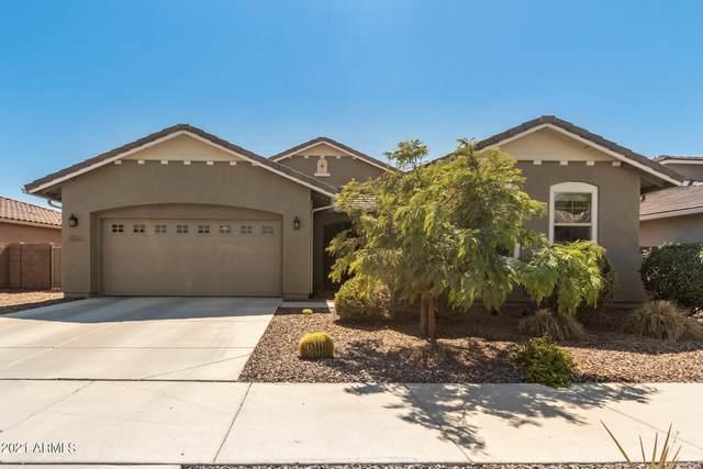 9025 W Alice Avenue, Peoria, AZ 85345 (MLS #6296731) :: Elite Home Advisors