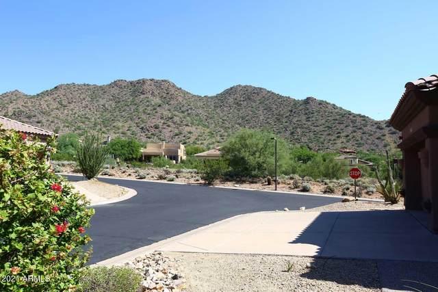 13785 E Laurel Lane, Scottsdale, AZ 85259 (MLS #6296848) :: Howe Realty