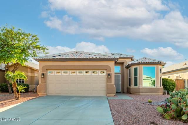 19880 N 110TH Lane, Sun City, AZ 85373 (MLS #6296866) :: Devor Real Estate Associates
