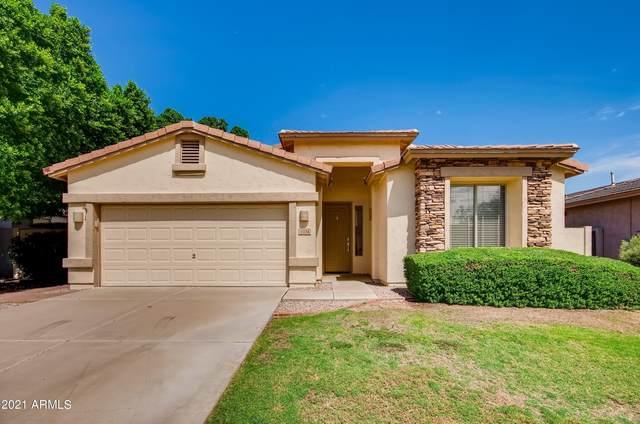 1724 W Deer Creek Road, Phoenix, AZ 85045 (MLS #6296899) :: Elite Home Advisors