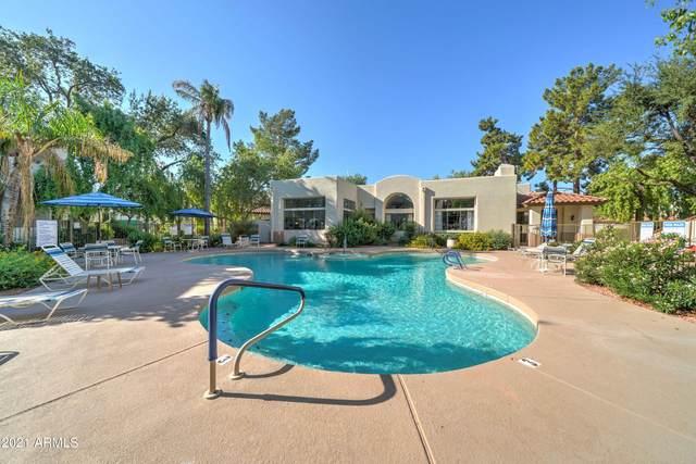 750 E Northern Avenue #2033, Phoenix, AZ 85020 (MLS #6297017) :: The Ellens Team