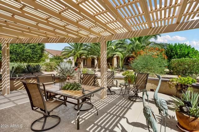 16502 W La Posada Lane, Surprise, AZ 85374 (MLS #6297072) :: Elite Home Advisors