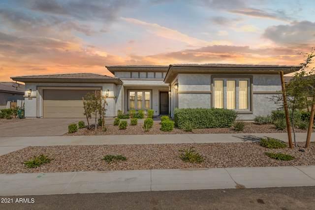 10536 E Thatcher Avenue, Mesa, AZ 85212 (MLS #6297446) :: Elite Home Advisors