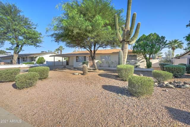 2816 E Cholla Street, Phoenix, AZ 85028 (MLS #6297481) :: Elite Home Advisors