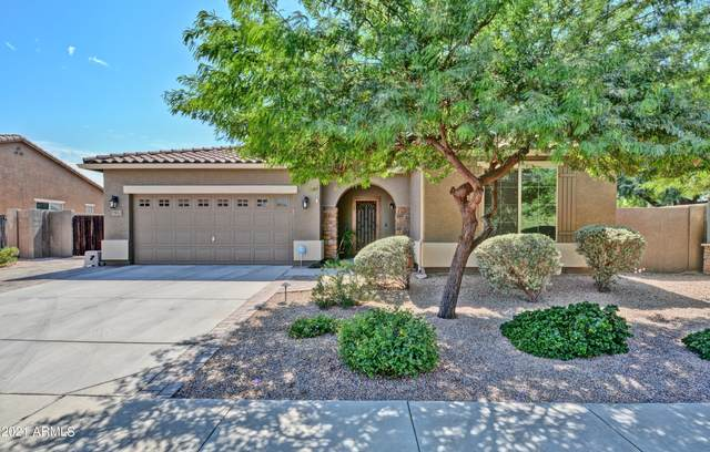 7583 W Keim Drive, Glendale, AZ 85303 (MLS #6297553) :: Yost Realty Group at RE/MAX Casa Grande