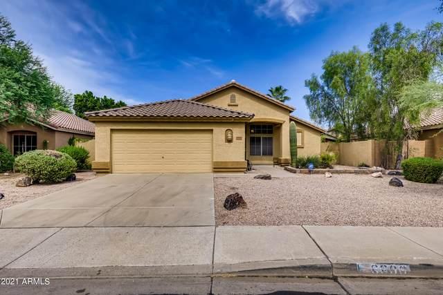 6806 W Quail Avenue, Glendale, AZ 85308 (MLS #6297585) :: Elite Home Advisors
