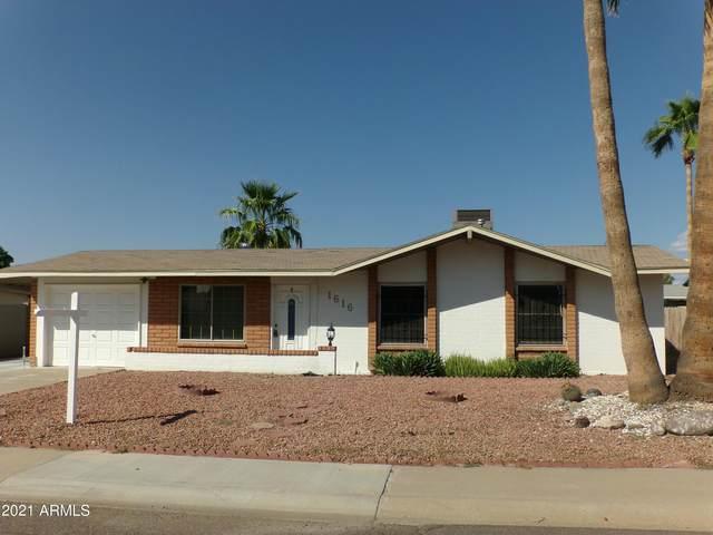1616 W Libby Street, Phoenix, AZ 85023 (MLS #6297691) :: Elite Home Advisors