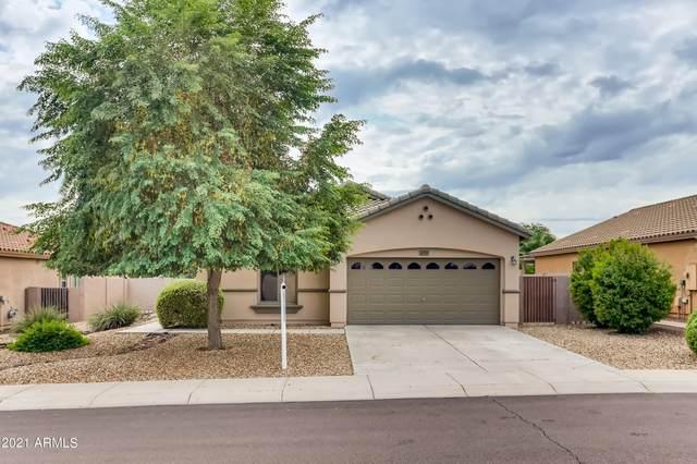 19205 W Reade Avenue, Litchfield Park, AZ 85340 (MLS #6297884) :: neXGen Real Estate