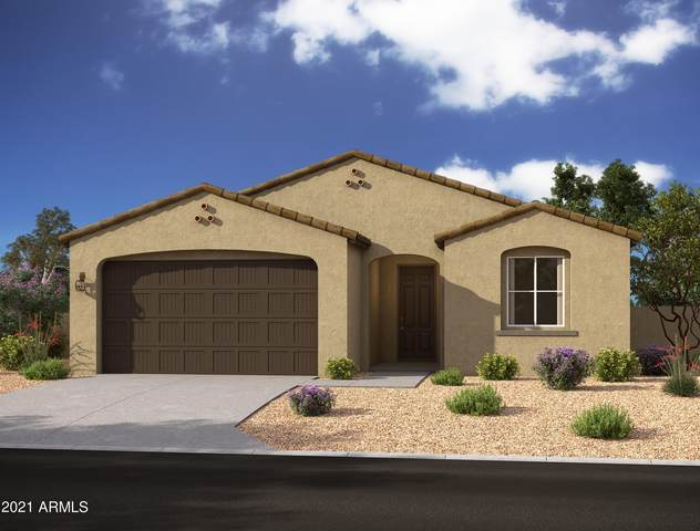 13349 W Tether Trail, Peoria, AZ 85383 (MLS #6298037) :: Elite Home Advisors