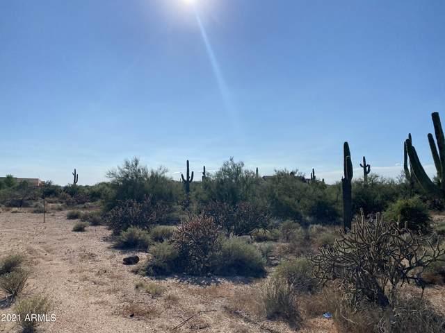 310xx N Sunrise Ranch Road, Cave Creek, AZ 85331 (MLS #6298056) :: The Daniel Montez Real Estate Group