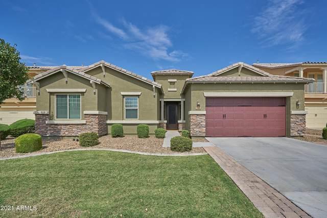 2186 E Everglade Lane, Gilbert, AZ 85298 (MLS #6298114) :: Yost Realty Group at RE/MAX Casa Grande