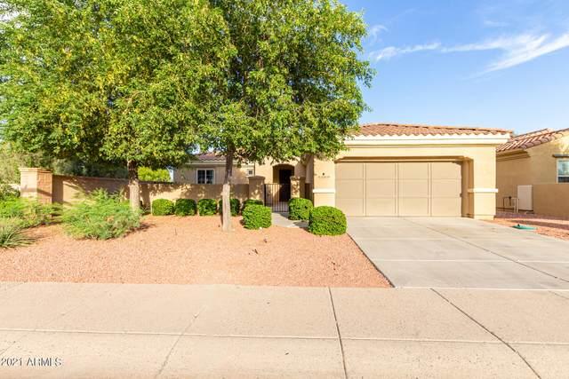 22839 N Arrellaga Drive, Sun City West, AZ 85375 (MLS #6298176) :: The Daniel Montez Real Estate Group
