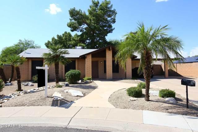 13238 N 31st Street, Phoenix, AZ 85032 (MLS #6298407) :: Elite Home Advisors