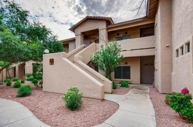 1351 N Pleasant Drive #2084, Chandler, AZ 85225 (MLS #6298568) :: Elite Home Advisors
