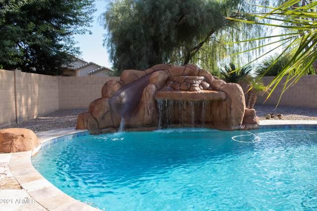 17967 W Caribbean Lane, Surprise, AZ 85388 (MLS #6298581) :: Elite Home Advisors
