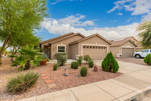 22739 W Cocopah Street, Buckeye, AZ 85326 (MLS #6298636) :: Executive Realty Advisors