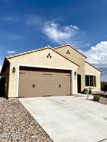5412 W Patriot Way, Florence, AZ 85132 (MLS #6298695) :: Elite Home Advisors