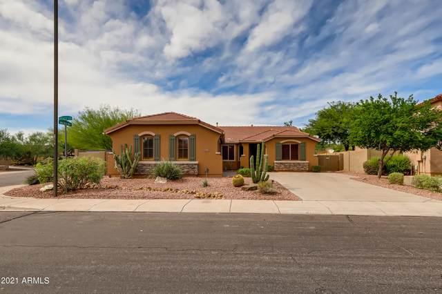 40606 N Peale Court, Anthem, AZ 85086 (MLS #6298709) :: Elite Home Advisors