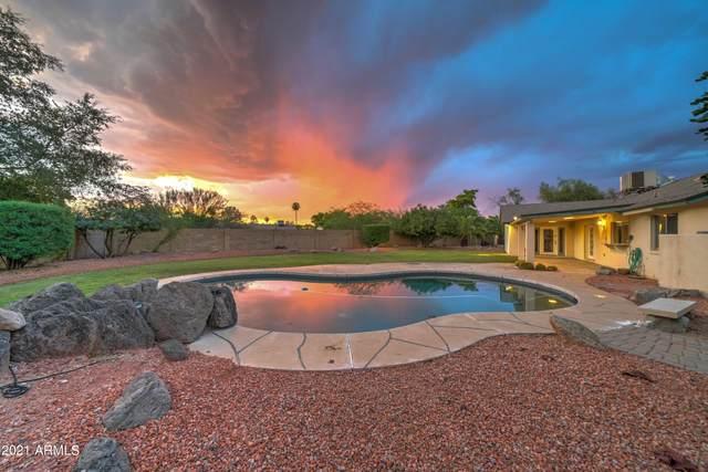 4201 E Sheena Drive, Phoenix, AZ 85032 (MLS #6299083) :: Elite Home Advisors