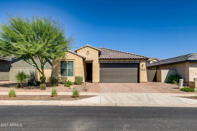 14424 W Bloomfield Road, Surprise, AZ 85379 (MLS #6299309) :: Elite Home Advisors