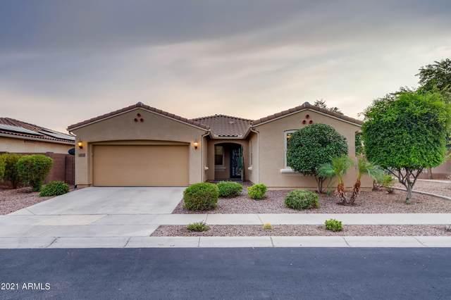 8975 W Alice Avenue, Peoria, AZ 85345 (MLS #6299593) :: Elite Home Advisors