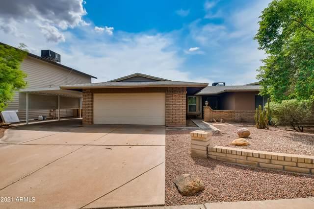1313 W Plata Avenue, Mesa, AZ 85202 (MLS #6299934) :: Klaus Team Real Estate Solutions