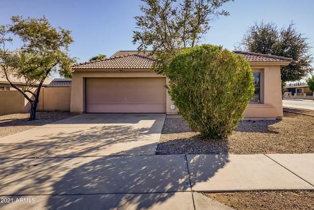 6639 S 18TH Lane, Phoenix, AZ 85041 (MLS #6300639) :: Elite Home Advisors