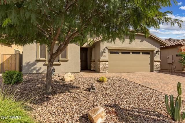 362 E Red Mesa Trail, San Tan Valley, AZ 85143 (MLS #6300806) :: Elite Home Advisors
