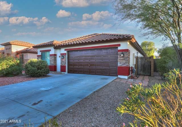46023 W Starlight Drive, Maricopa, AZ 85139 (MLS #6301665) :: The Luna Team