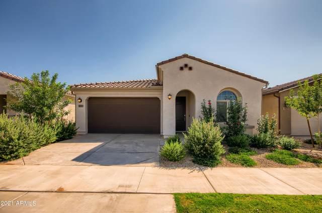 9833 E Talon Avenue, Mesa, AZ 85212 (MLS #6301704) :: Klaus Team Real Estate Solutions