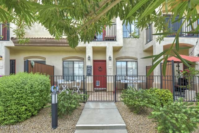 3150 E Beardsley Road #1093, Phoenix, AZ 85050 (MLS #6302032) :: The Dobbins Team