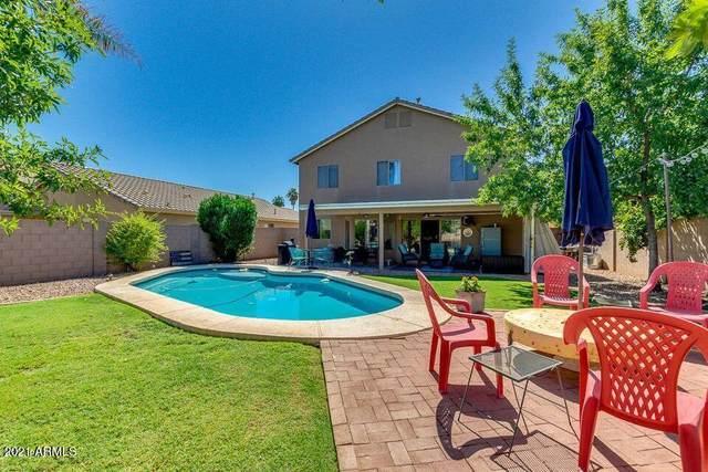 3914 E Vaughn Avenue, Gilbert, AZ 85234 (MLS #6302436) :: Elite Home Advisors