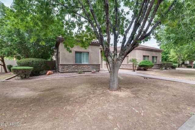 2902 E Gary Way, Phoenix, AZ 85042 (MLS #6302515) :: Elite Home Advisors