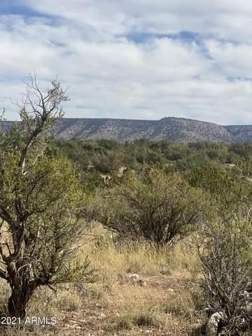 55865 N Dominion Drive, Seligman, AZ 86337 (MLS #6302648) :: Yost Realty Group at RE/MAX Casa Grande