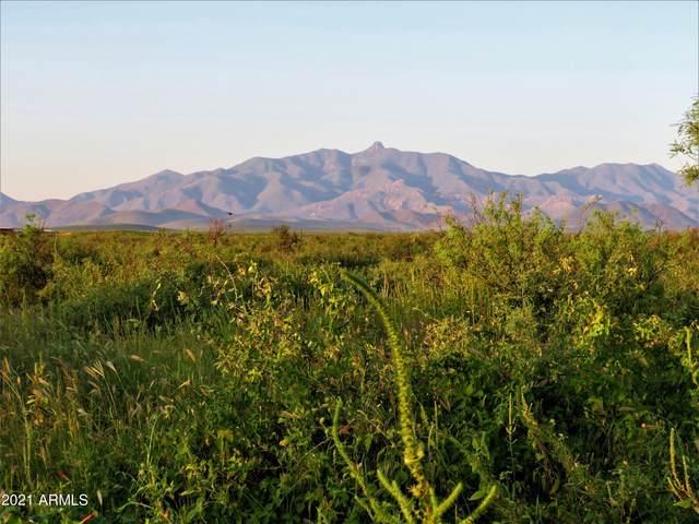 TBD E Phillips  30 Acres, Willcox, AZ 85643 (MLS #6302676) :: Elite Home Advisors