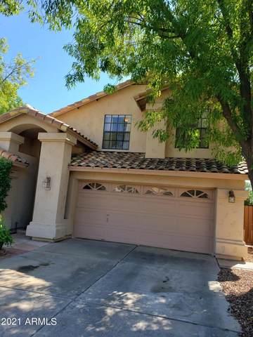 1745 E Watercress Lane, Gilbert, AZ 85234 (MLS #6302758) :: Elite Home Advisors