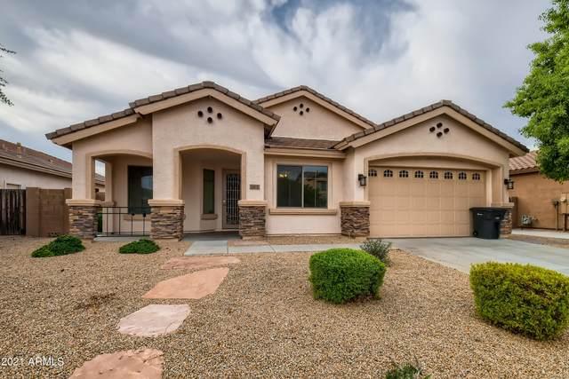 2813 E Cobalt Street, Chandler, AZ 85225 (MLS #6302759) :: Elite Home Advisors